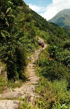 Flagstoned path
